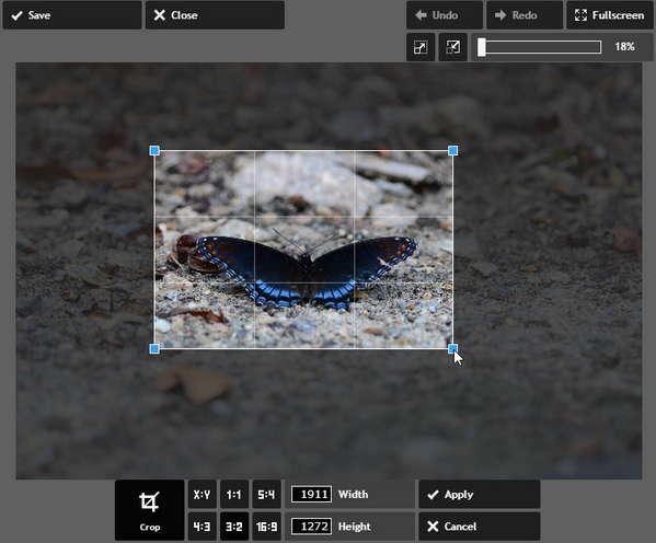 Кадрирование фото в онлайн редакторе Pixlr Express