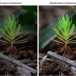 Онлайн обработка фотографий  — устранение недостатков