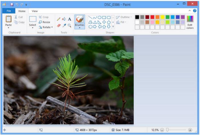 Скачать приложения на компьютер для редактирования фотографий