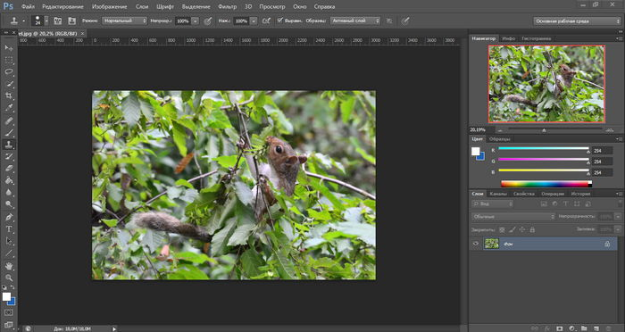 с программой photoshop elements знакомство