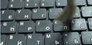 Чистим ноутбук