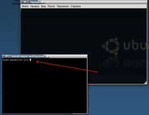 Устанавливаем пакеты в Линукс