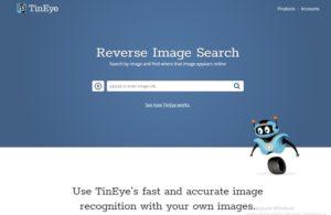 Начальная страница tineye