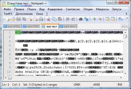 Исполняемый файл