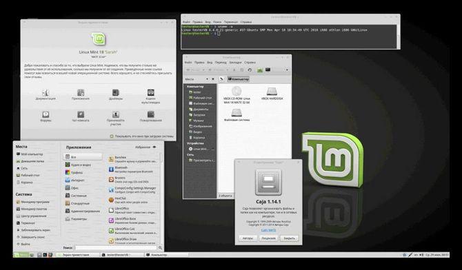 Система Linux Mint
