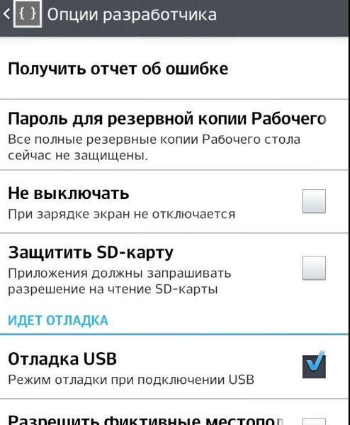 Опции разработчика