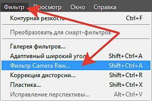 Фильтр Camera Raw